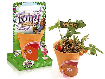 My Fairy Garden Flowerpot